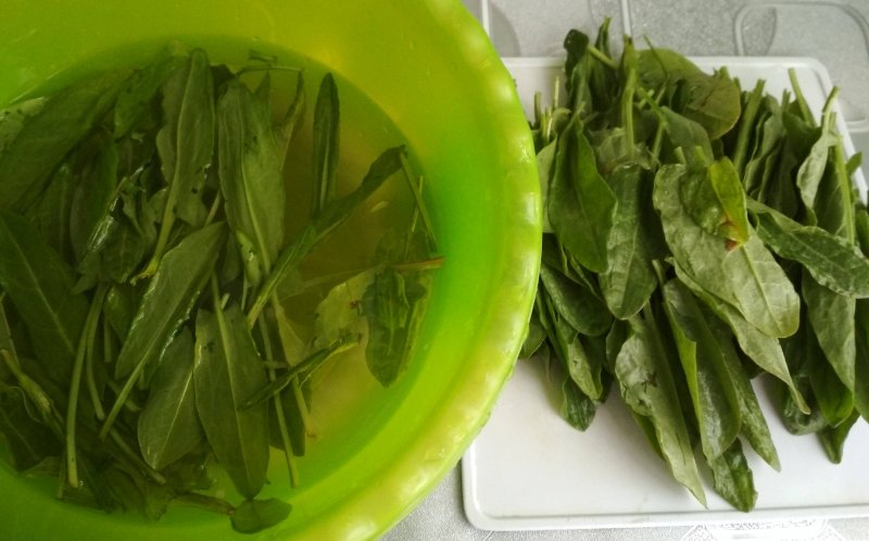 Салат из щавеля с яйцом и огурцом | Рецепт приготовления | Шаг 2
